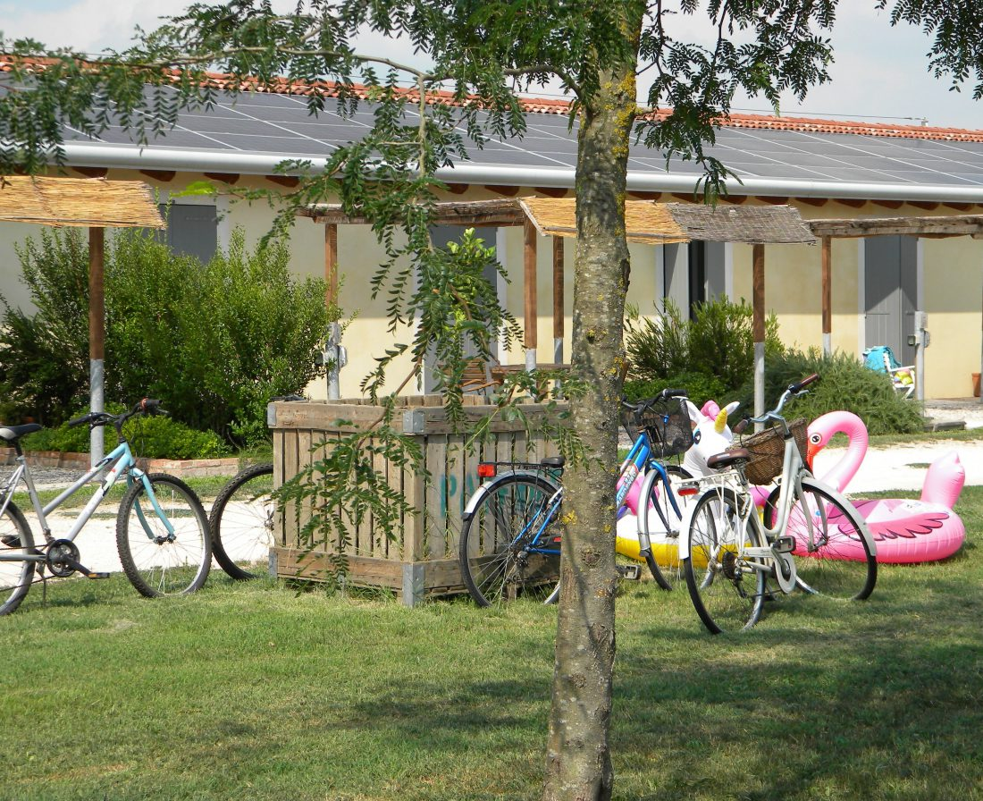 The bicycles for our guests